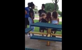 SHOCK VIDEO: Black Teen Brutally Beats Up White Girl Holding A Toddler